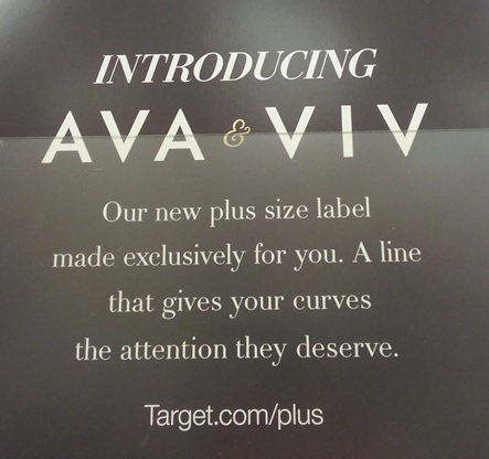23302764355 My Two Cents  Target s Ava   Viv Review – Big City
